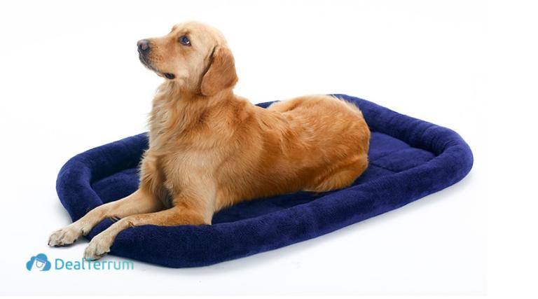 Warm Cushion Dog Mat in Various Sizes Beds & Mats Pet Needs