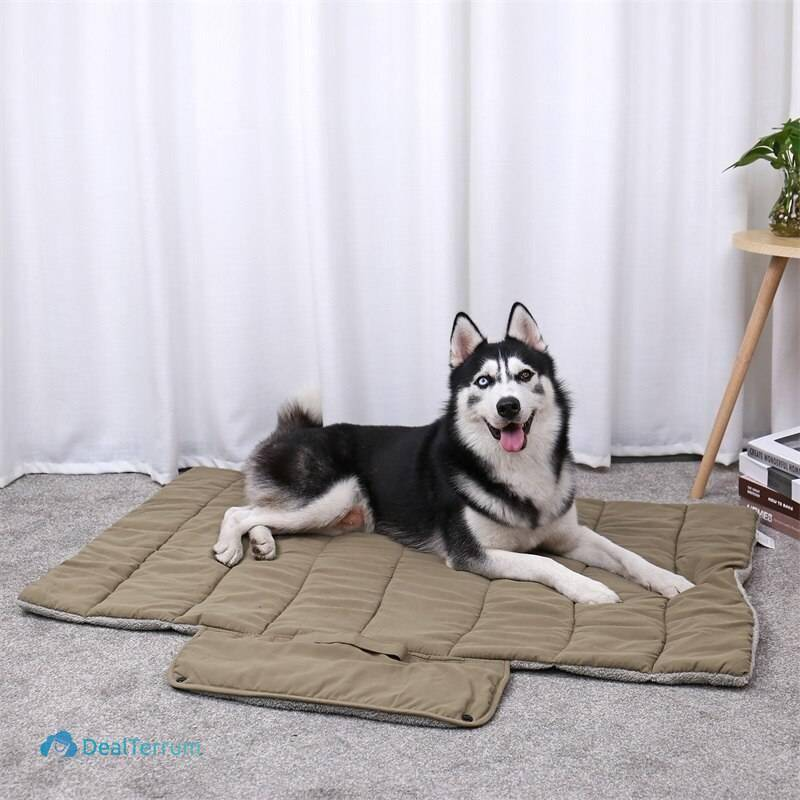 Foldable Design Mat for Pets Beds & Mats Pet Needs